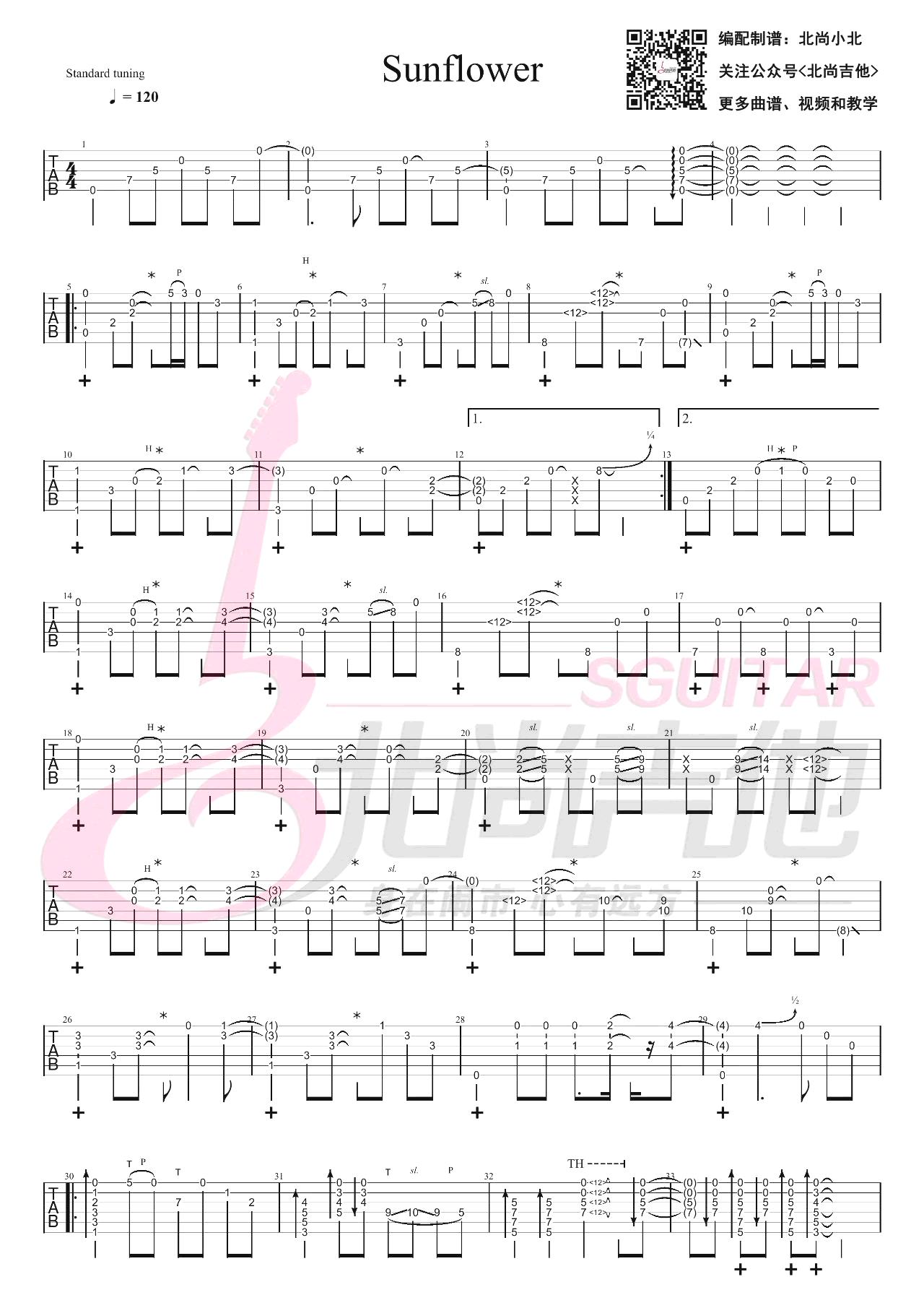 孙培博-Sunflower太阳花指弹吉他谱-1