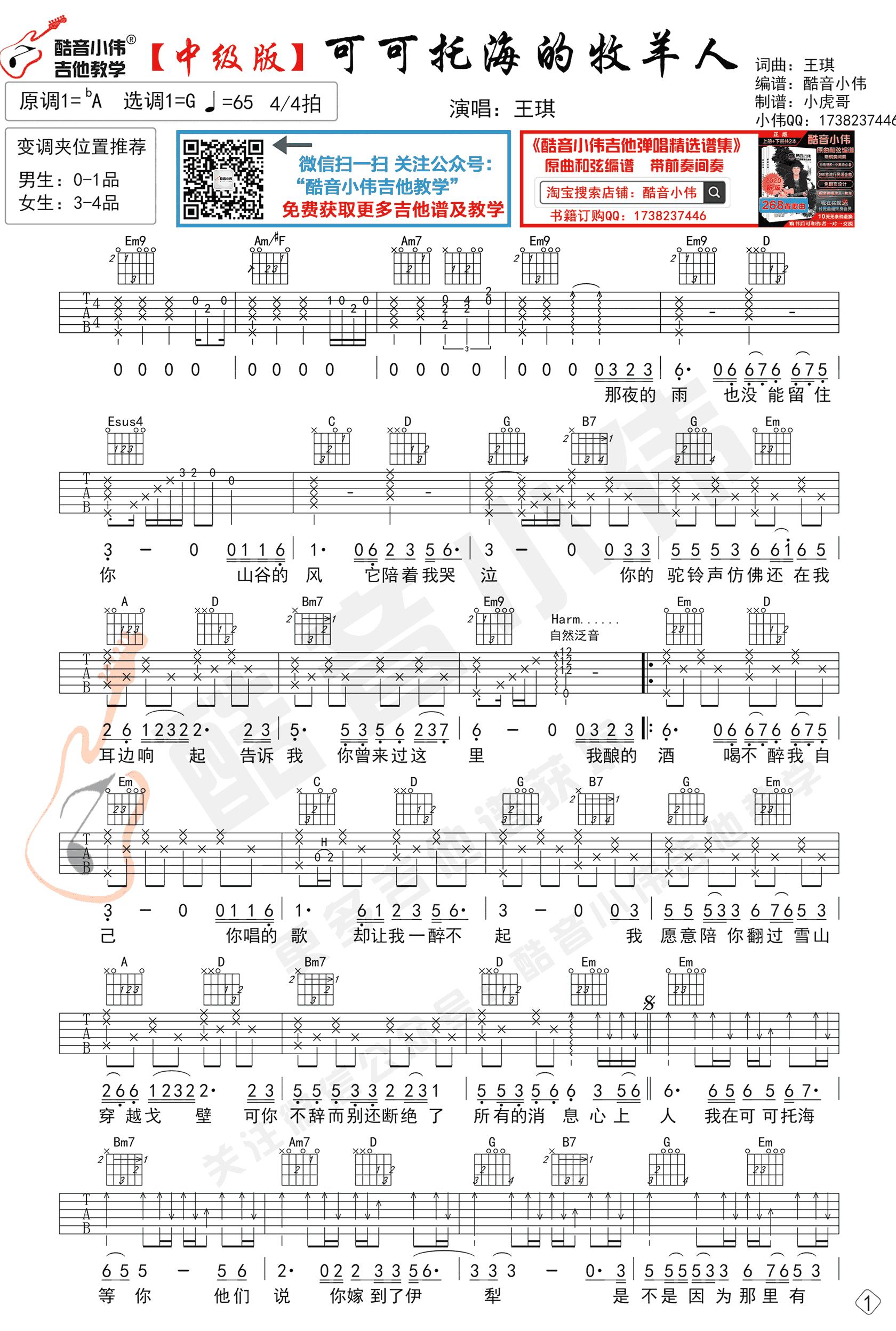 王琪-可可托海的牧羊人吉他谱-原版弹唱教学-1